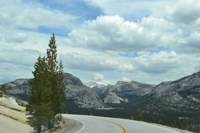 Yosemite, Californie, parc, tioga road
