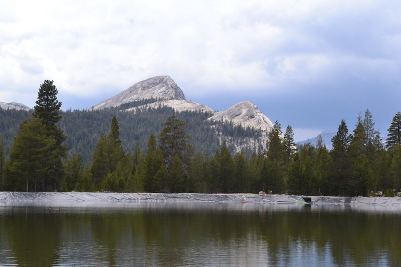 parc, californie, yosemtie, Tuolumne Meadows