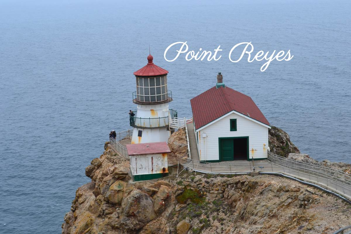 Phare Point Reyes
