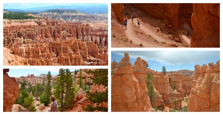 Visite Bryce Canyon