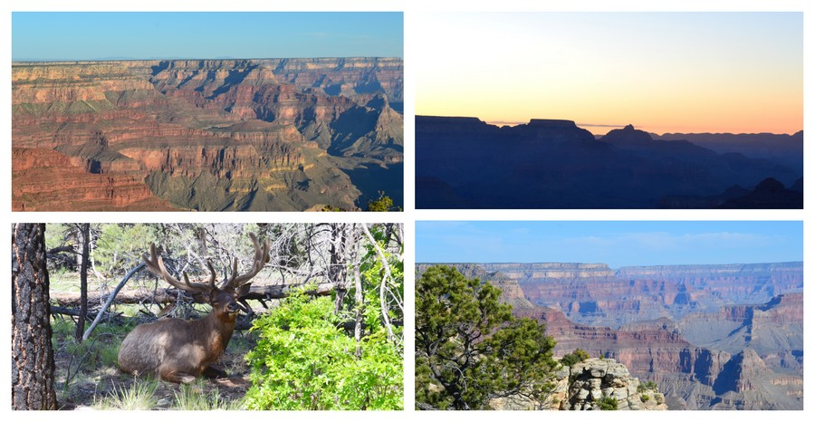 Visite Grand Canyon