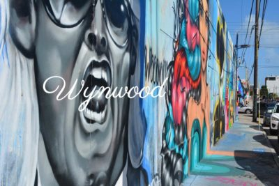 Street Art Wynwood