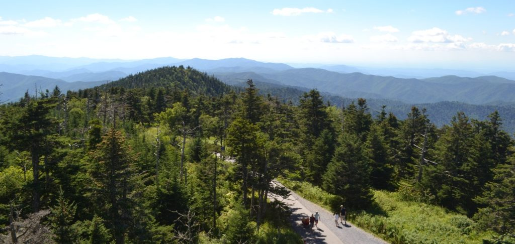 Point de Vue sur les Great Smoky Mountains