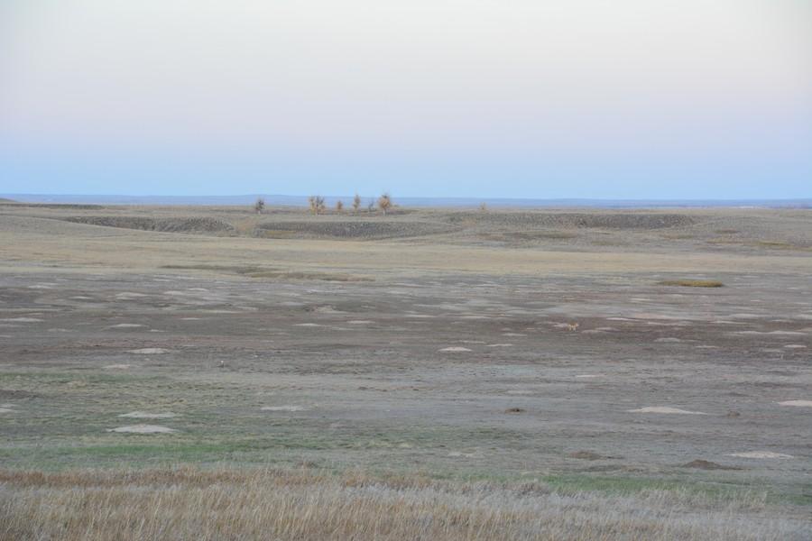 prairie infinie à Baldlands National Park