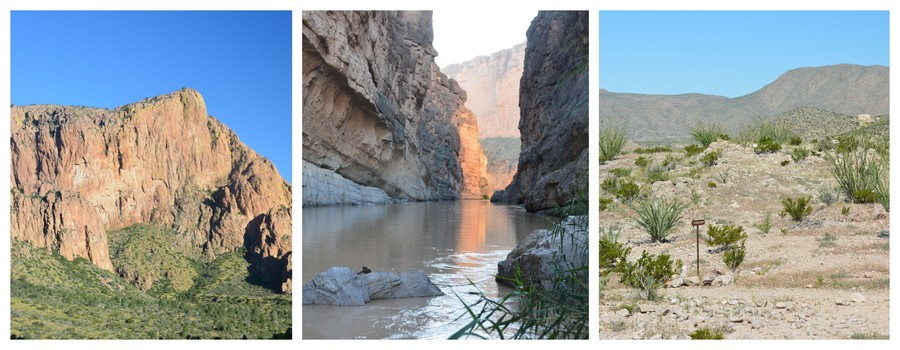 Le magnifique parc national de Big Bend National