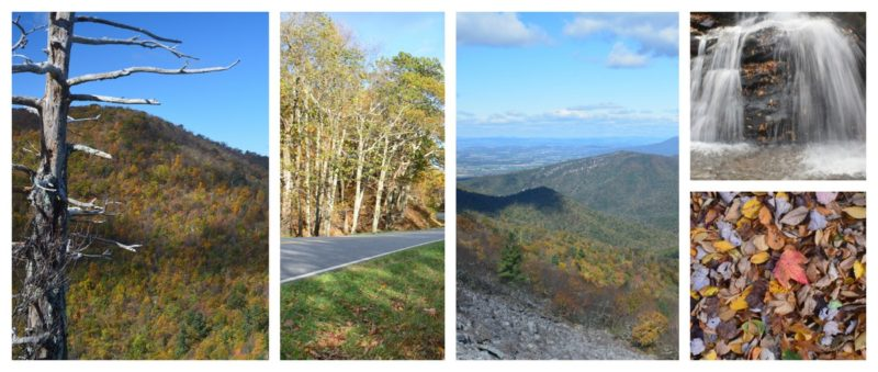 Photo couleurs Shenandoah