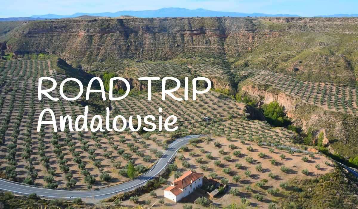 https://www.travelsandme.com/road-trip-andalousie/