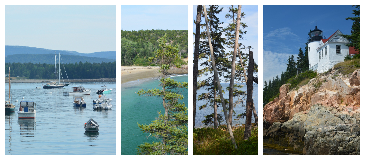 Montage parc national Acadia